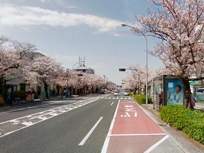 honmokukei2.jpg